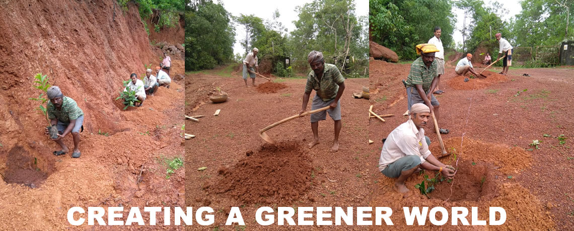 Creating a greener world